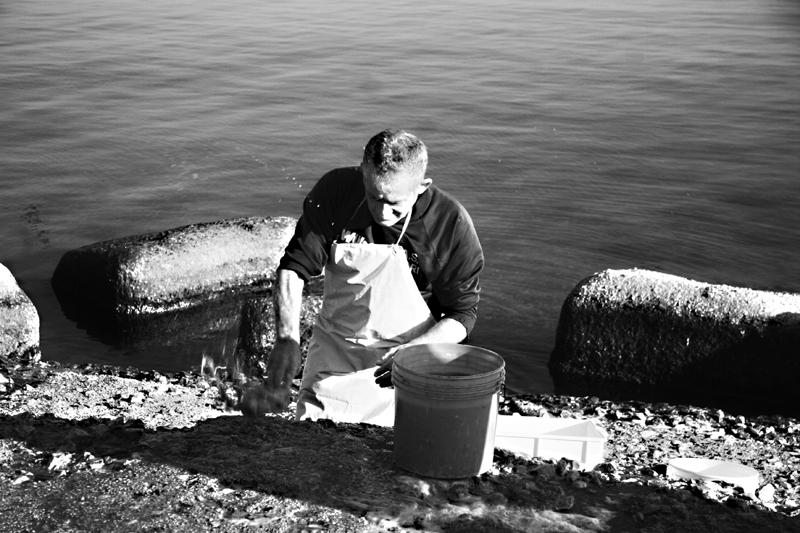 Pescatori di uomini tuttafirenze for Lungomare elevato