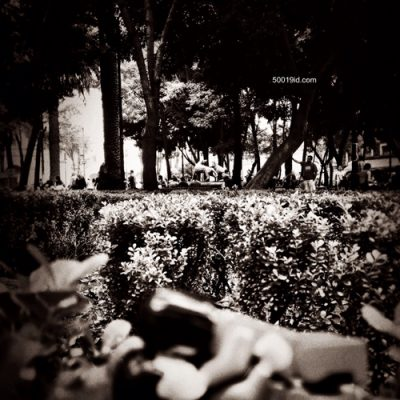 ME&TE | Jardín Centenario