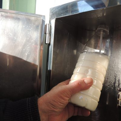 Cavaliere al latte crudo