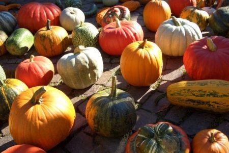 Una frittata per Halloween