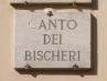 bischeri