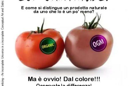 Politica e OGM