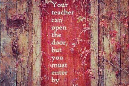 Dialoghi sull'educazione