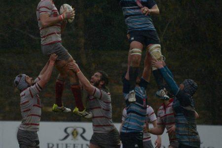 Rugby e pallavolo?