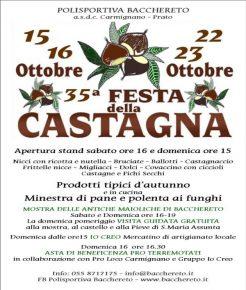 sagra_della_castagna
