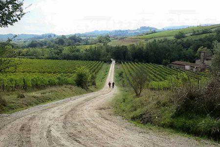 La Via Francigena: da antica via di pellegrinaggioa prodotto turistico