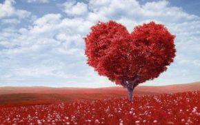 """Aranzulla e i tutorial """"del cuore"""""""